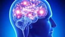 Neurociencias en el fútbol
