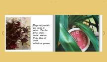 Catálogo de Cuarentena