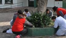 Clínica de plantas de Escuela Especial